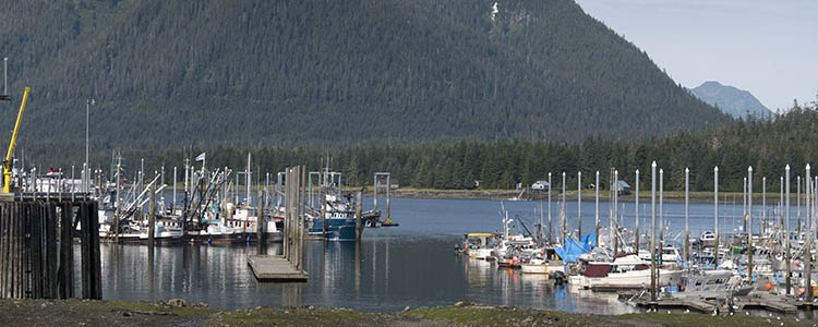 Things to do in petersburg alaska